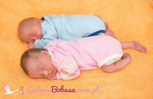 Zobaczcie urocze noworodki z Jastrz�bia
