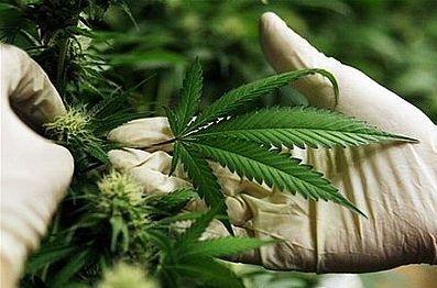 26-latek miał 6 gram marihuany w kieszeni, archiwum