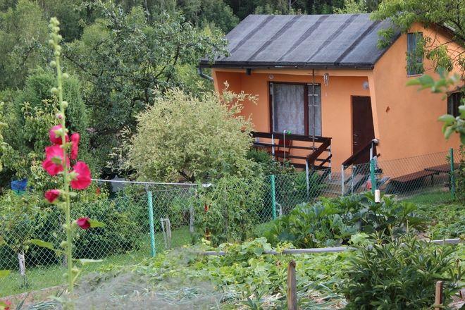 Ogródek działkowy przy ul. Wschodniej