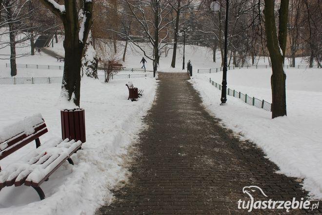 Za rok park przy ul. Żeromskiego nabierze nowego blasku, archiwum