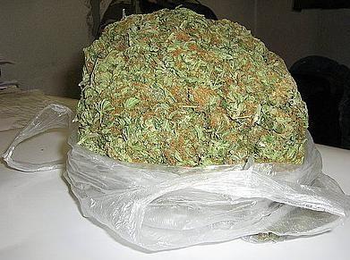 Policja złapała 2 nastolatków posiadających marihuanę,