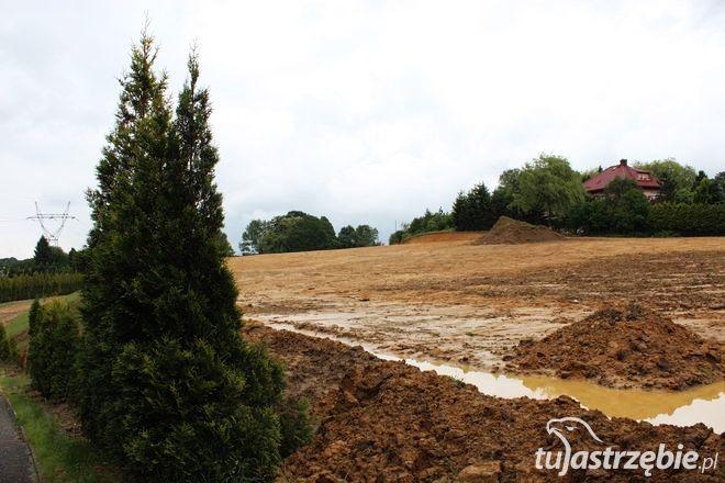 Pierwszy etap rozbudowy cmentarza da 2400 nowych miejsc grzebalnych